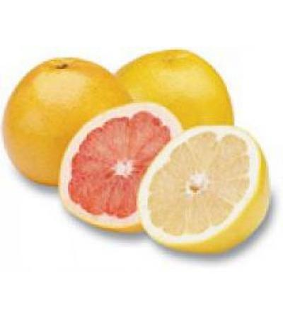 Gift Basket of Israeli Citrus fruits - White Grapefruit